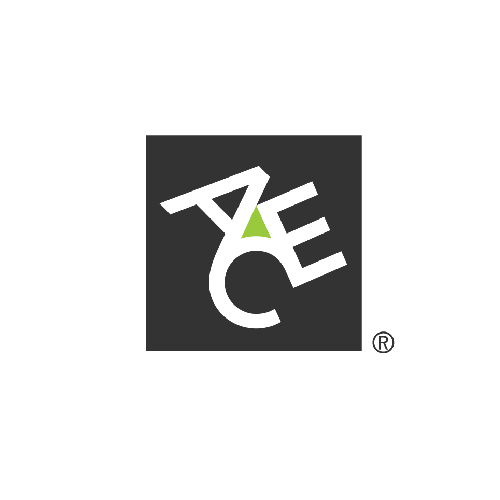 ACE American Insurance Company